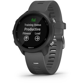 Garmin Forerunner 245 Montre GPS connectée, black/slate